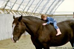 Little girl.  Big horse. ❤
