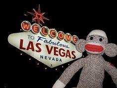 Sock Monkey in Vegas