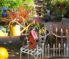 Great Garden Design Items~~~I'll take the vintage watering can and the iron fence! You may have the rest!!!