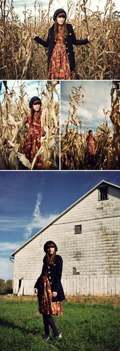 more corn maze