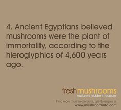 It's Day 4 of National Mushroom Month! SHARE this fun fact about mushroom history! #WFD2012 #IAmVegetable