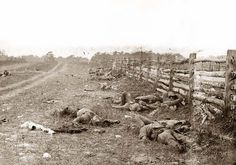 Antietam, Maryland; Confederate Soldiers lay dead by a fence on the Hagerstown road. It was taken in 1862 by Gardner, Alexander, 1821-1882.