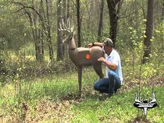Bow Shooting Tips, How to Shoot Your Bow More Accurately - http://huntingbows.co/bow-shooting-tips-how-to-shoot-your-bow-more-accurately/
