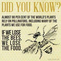 Food and Pollinators