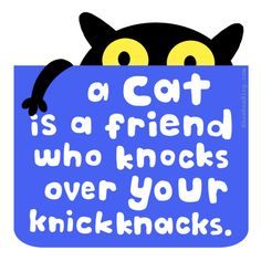 A cat is a friend who knocks over your knickknacks.
