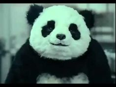 "Never Say No To Panda "" Panda Cheese Commercial "" - دعاية جبنة باندا Hostile Panda! LOL!"