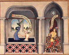 Melusine, mermaid to the Plantagenets