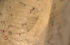 Page from the illustrated 'Kitab suwar al-kawakib al-thabita' (Treatise on the fixed stars), produced in 1010.