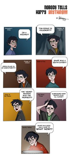 Harry Potter and the Lack of Information...poor Harry!