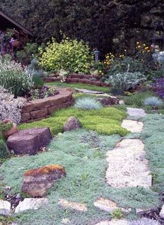 Growing dainty, fragrant herbs in the crevices of paths and walls prevents weeds and adds whimsy to your yard or garden.