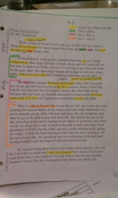 """parts of an expository essay The """"five paragraph essay"""" is the most widely taught expository writing format   go as far as to specify the number of sentences in each part of each paragraph."""