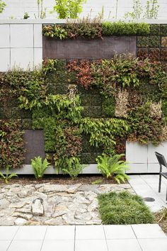landscap, garden ideas, vertic garden, garden walls, outdoor