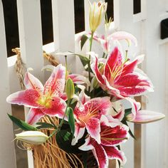 Stargazer Lillies - I have some of these in my flower beds.
