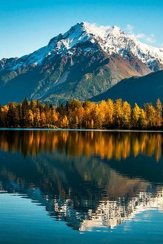 ✯ Majestic Mountain - Autumn