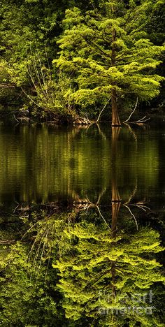 ✯ Reflections - Indian Lake Before The Storm