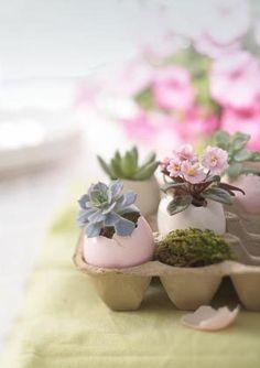 flowers in egg shells for easter