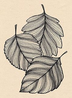 Engraved Leaves | Urban Threads: Unique and Awesome Embroidery Designs
