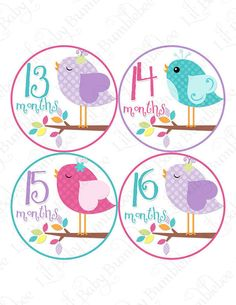 Monthly Bodysuit Stickers, 2nd Year Stickers, Months 13 to 24, Monthly Baby Stickers, Baby Month Stickers, Milestone Stickers (Alaina-2)