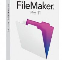 FileMaker Pro, quickly and easily create and share solutions on iPad, iPhone, and desktop. (http://www.filemaker.com/)