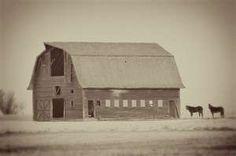 barn . antique photo . farm