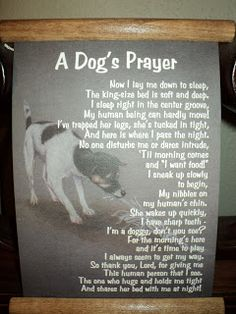 Red Lake Rosie's Rescue: A Dog's Prayer