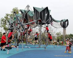 """Unique climbing structure with roped in """"tree"""" houses"""