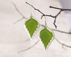 Birch Leaf Earrings  Green real leaf earring  Real by UralNature, $52.00