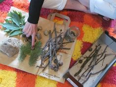 Introduce your preschoolers to nature with a nature box!