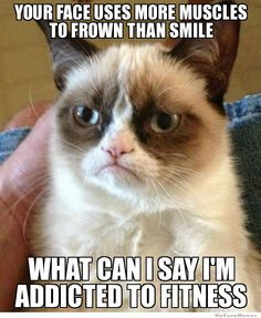 Grumpy Cat on frowning :-))