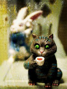 Cheshire Cat ♥