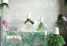 Sky planter es una maceta de diseño innovador para plantas dispuesta boca abajo, cuyo contenedor está reciclado y permite el ahorro de agua y espacio