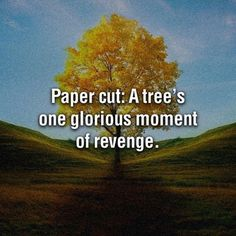 revenge, tree, funny pictures, funni, paper