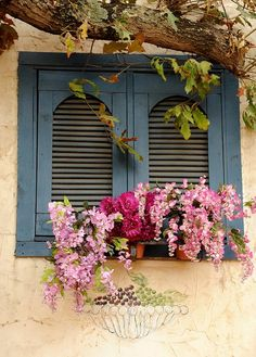 Window box and blue shutters