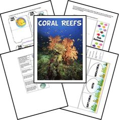 FREE Unit Study and Lapbook for Coral Reef  http://www.freehomeschooldeals.com/free-coral-reef-unit-study-and-lapbook/