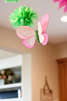 pink and green butterfly party