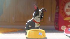 Disney's 'Feast' feeds on food-loving dog Winston
