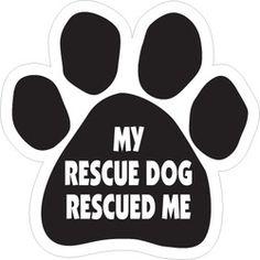 So true, Holly! ♥  #Dog #Pet