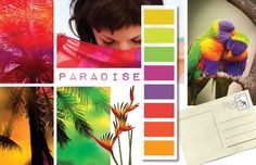tropical , citrus colors , summer color palettes, http://csicolorworld.com/blog/2013/01/29/spring-summer-2014-inspirations-paradise/