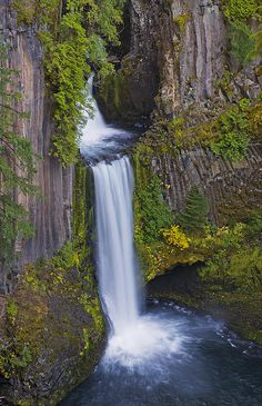 ✯ Toketee Falls - Douglas County, Oregon