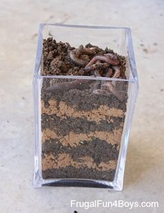 Layer dirt and sand to make a great worm observation jar!