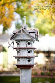 unique birdhouse