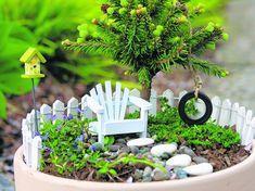 How to make a fairy garden.