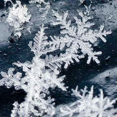 photo of snowflake