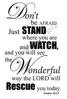Scripture  Encouragement Exodus 14:13