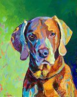 Amazing pet portraits by Joe Vivilecchia from here: http://www.sitstaypainted.com/gallery.html# pet portraits, color, art journalinspir, pets, pet photos, paint, gus, dog, animal