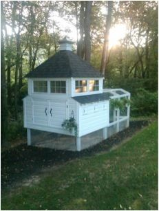 this i plan to build as a rabbit hutch in the summer :)