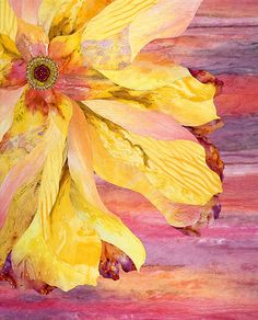 """Yellow Whimzy - 2012   41""""x 46.5""""  By Barbara Olson.    This quilt makes my heart SING!"""