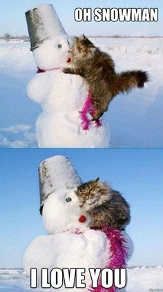 Cat Loves Snowman