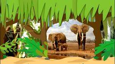 jungle animals, earthday