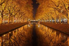fall reflection favorit place, jaroslaw miernik, magical places, trees, golden octob, beauti, october, reflect, wall photos